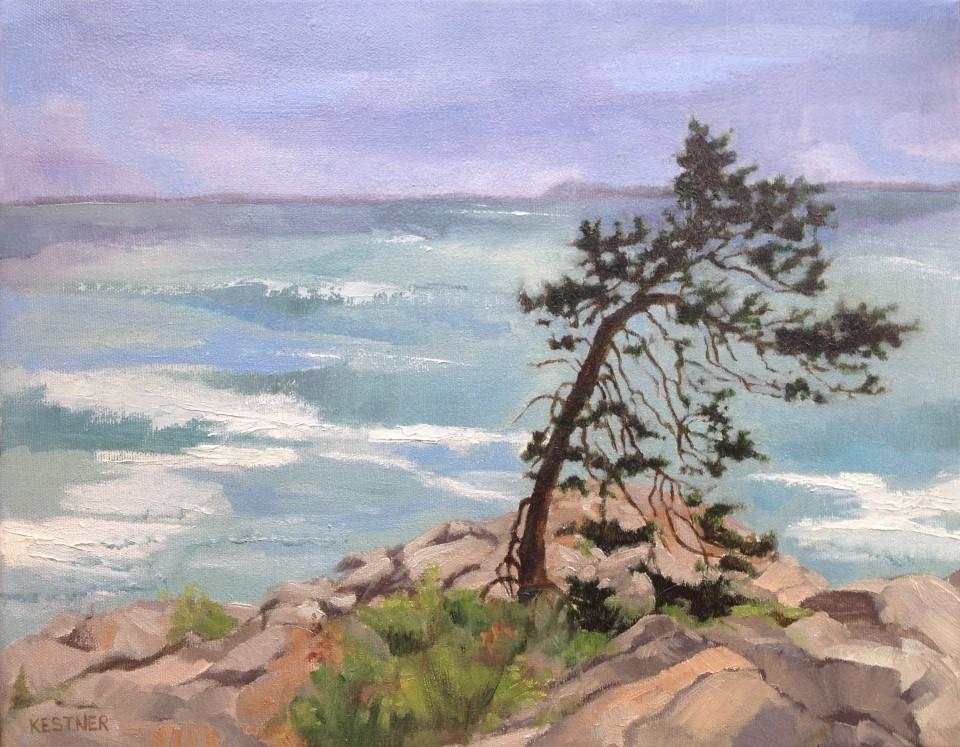 Susanne Kestner-Aiello_Jack Pine Point_Oil on Canvas